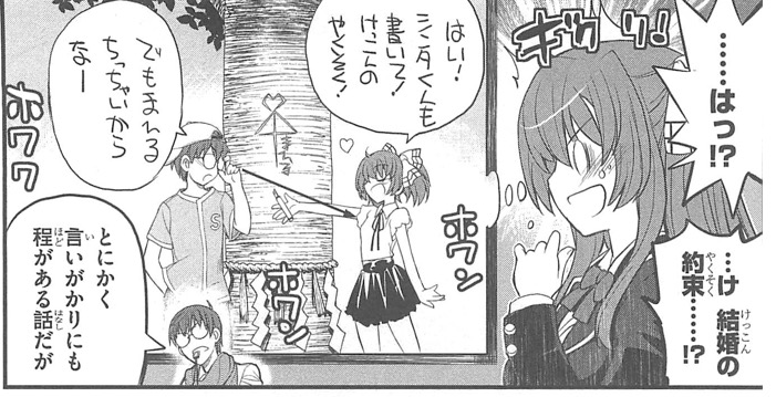 赤衣丸歩郎, ブラック嫁によろしく!, 第1巻